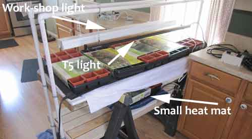 DIY seed starting setup
